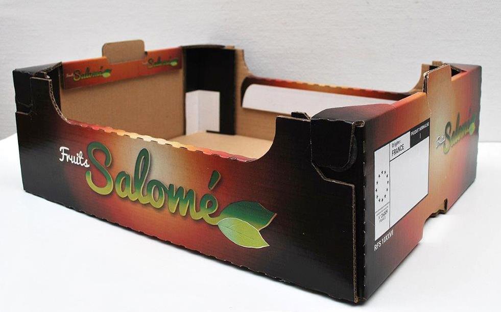 PACK VERT - SALOME